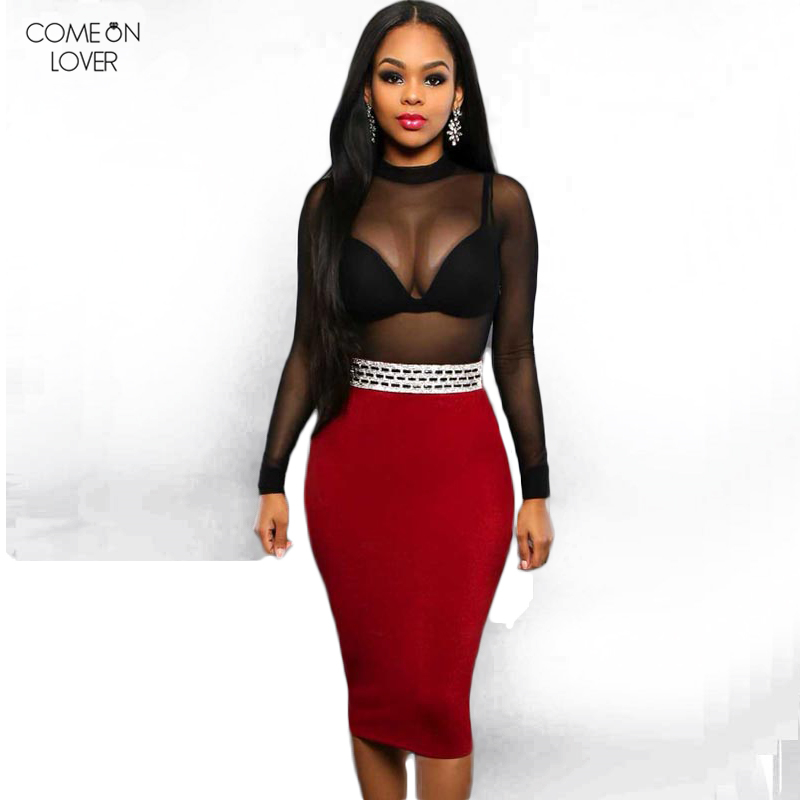 Comeonlover Sheer Mesh Bodycon Sheath Women Dress Black Long Sleeve