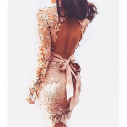 Sexy robe Backless Lace Dress  Deep V Long Sleeve Mini vestidos Openwork Crochet Club Party Women Dresses vestido de renda